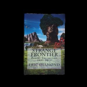 The Repairman: A Taste of Strange Frontier - Eric Diamond